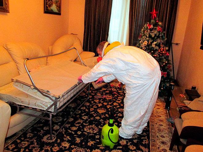 Эффективные средства для борьбы с молью в квартире