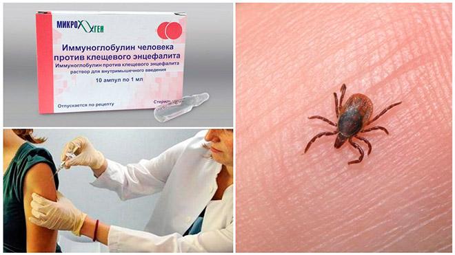 Введение лекарства сразу после укуса паразита